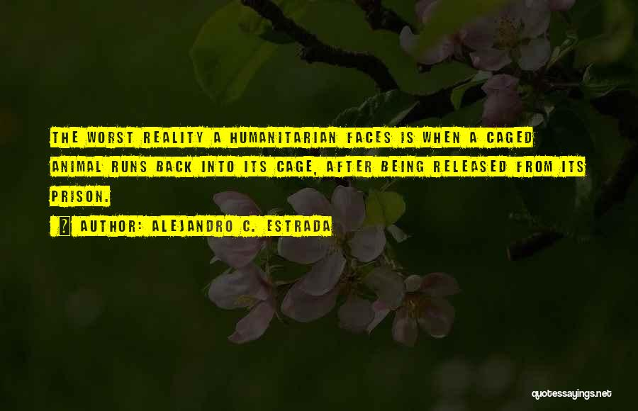 Being Released From Prison Quotes By Alejandro C. Estrada