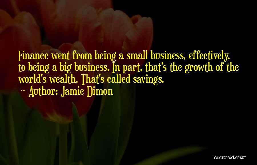 Being Small In A Big World Quotes By Jamie Dimon