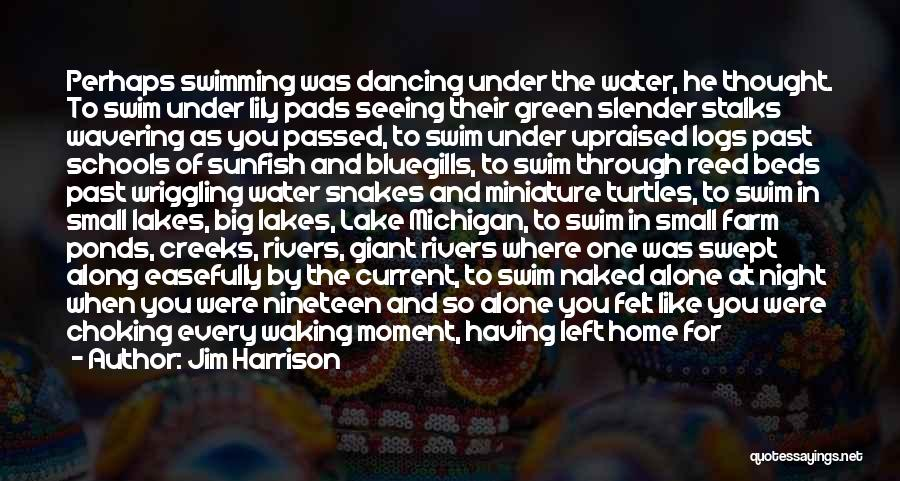 Being Small In A Big World Quotes By Jim Harrison