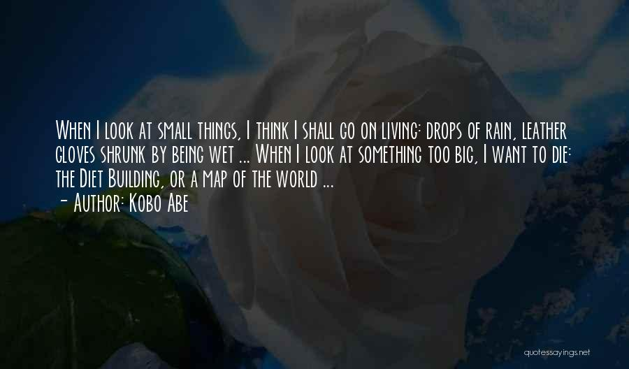 Being Small In A Big World Quotes By Kobo Abe