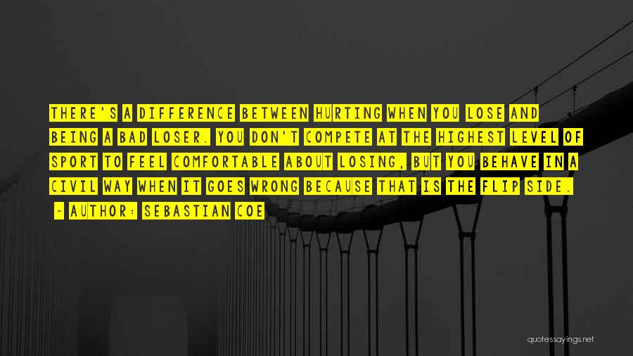 Being Sorry For Hurting You Quotes By Sebastian Coe
