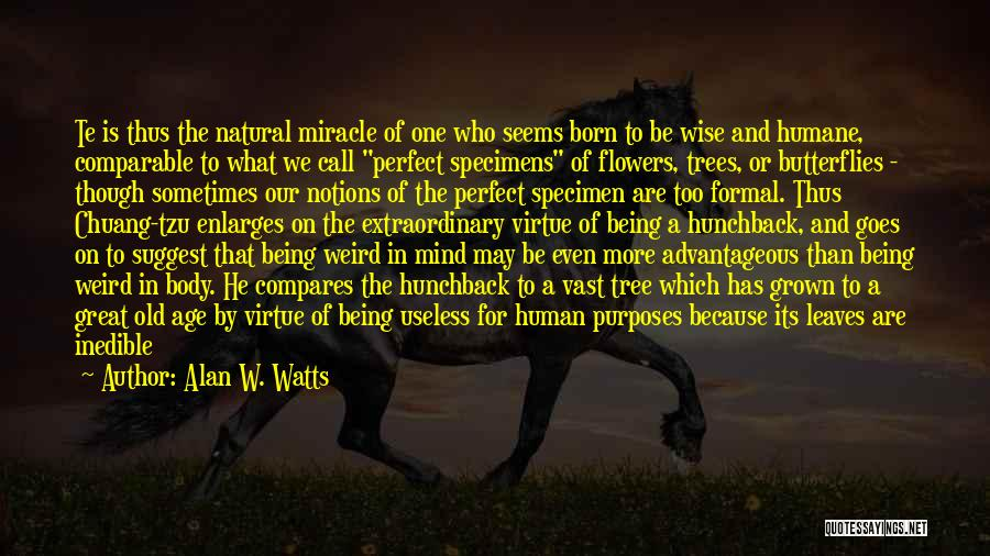 Being The Strong One Quotes By Alan W. Watts