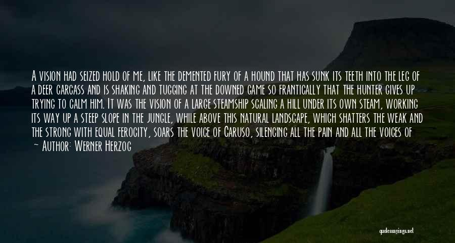 Being The Strong One Quotes By Werner Herzog