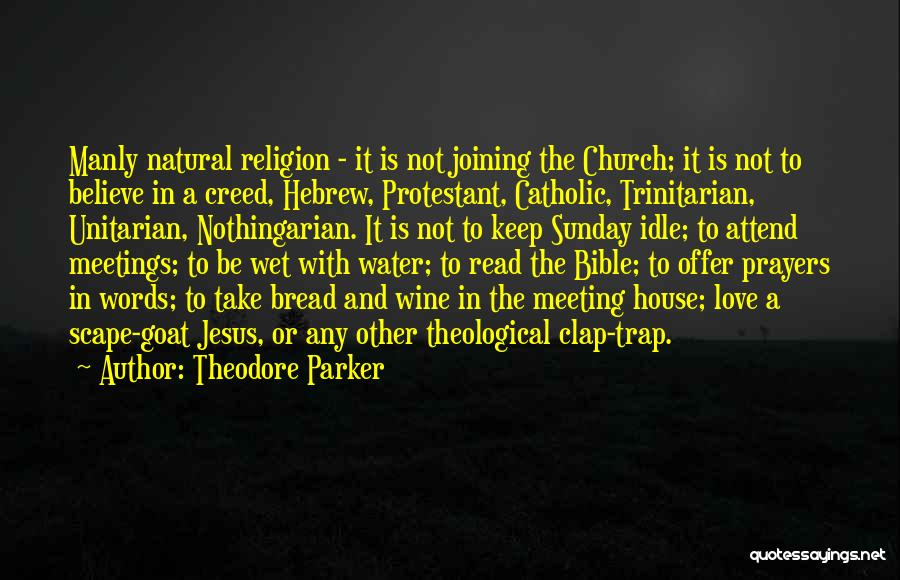 Believe In The Bible Quotes By Theodore Parker