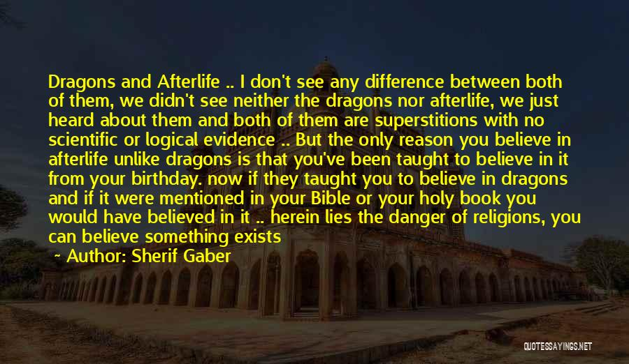 Believed Your Lies Quotes By Sherif Gaber