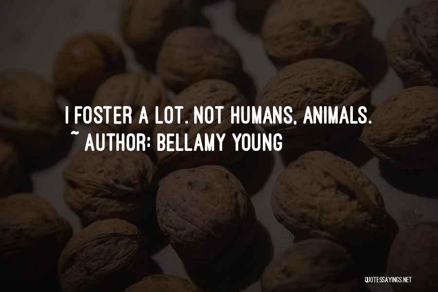 Bellamy Young Quotes 1531700