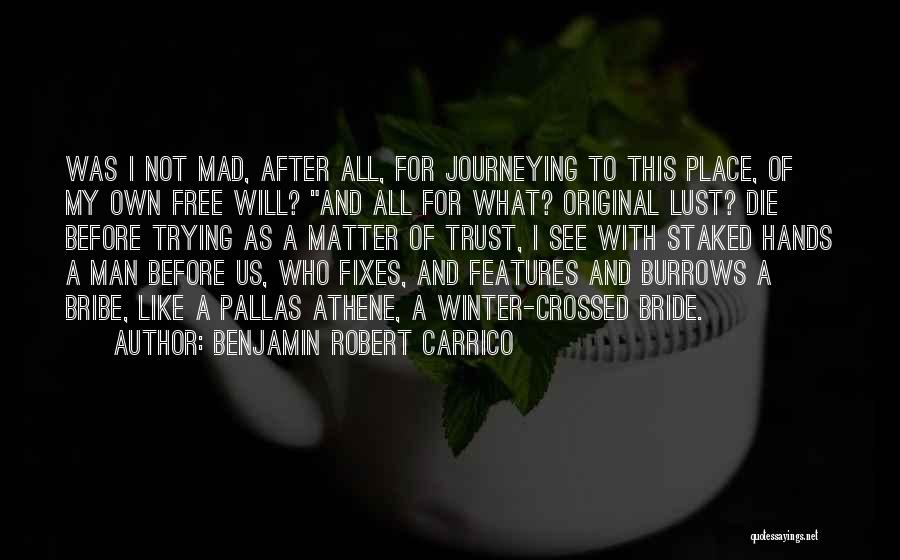 Benjamin Robert Carrico Quotes 1197515