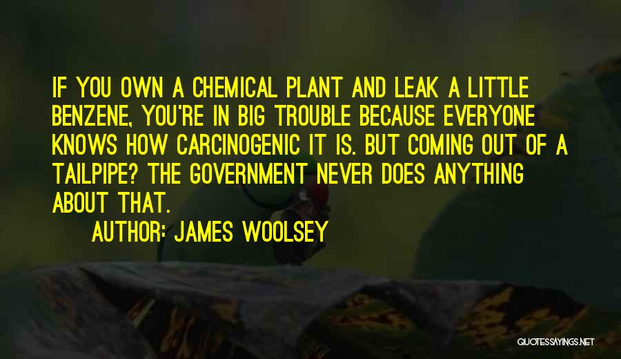 Benzene Quotes By James Woolsey