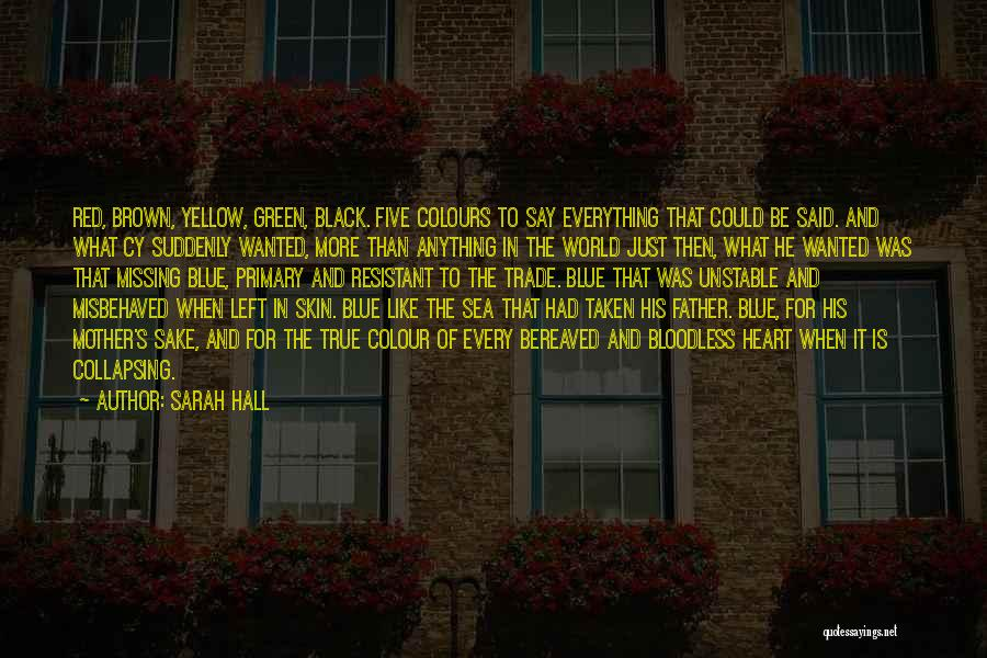 Bereaved Father Quotes By Sarah Hall