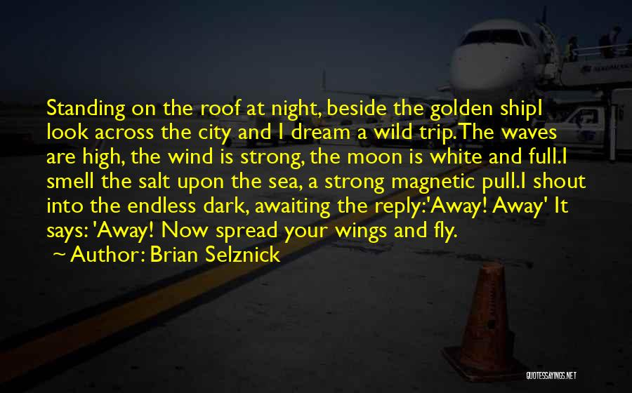 Beside The Sea Quotes By Brian Selznick