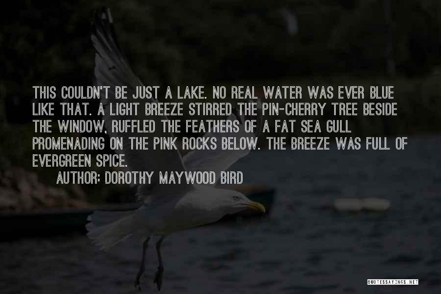 Beside The Sea Quotes By Dorothy Maywood Bird