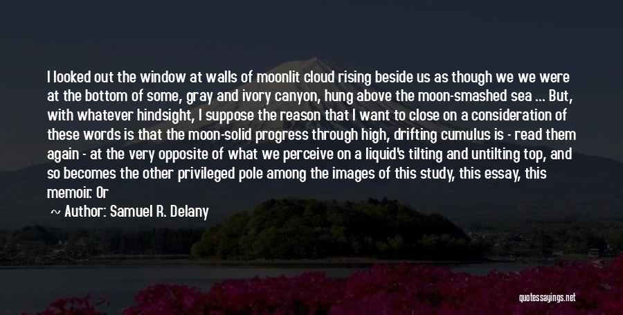 Beside The Sea Quotes By Samuel R. Delany