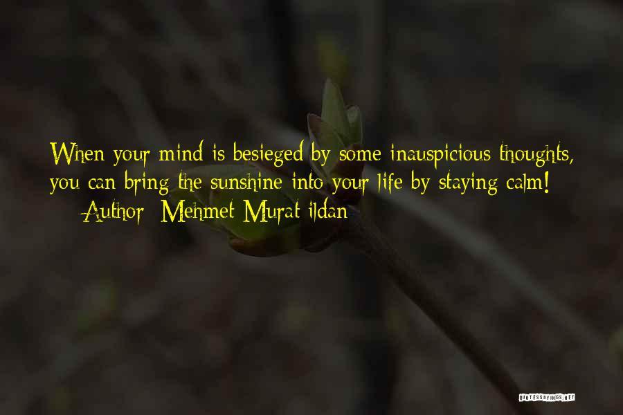 Besieged Quotes By Mehmet Murat Ildan