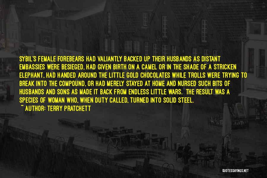 Besieged Quotes By Terry Pratchett