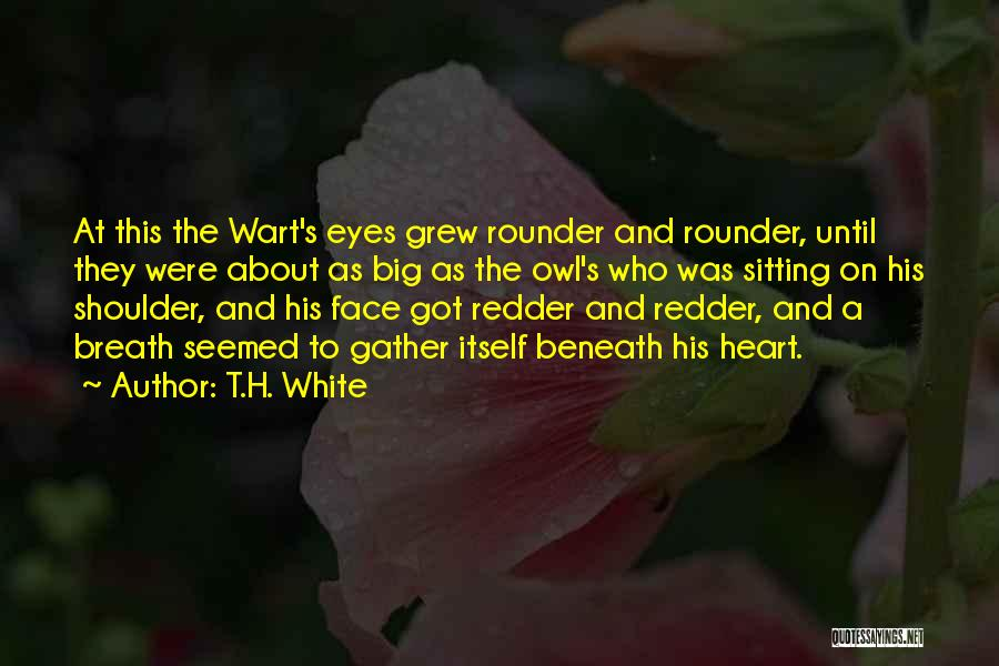 Best All Rounder Quotes By T.H. White