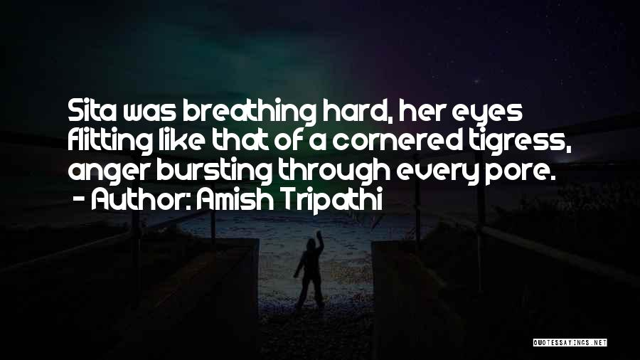 Best Amish Quotes By Amish Tripathi