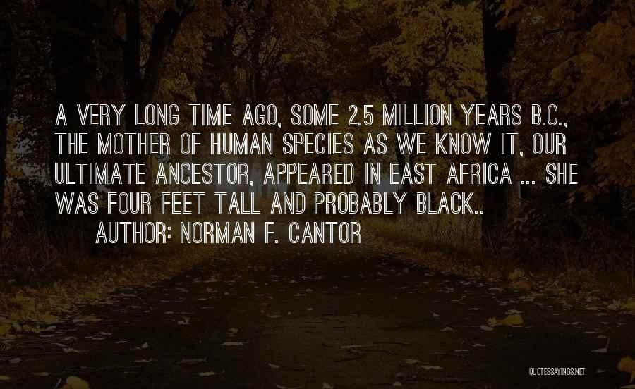Best Black History Quotes By Norman F. Cantor