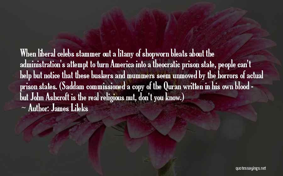Best Celebs Quotes By James Lileks