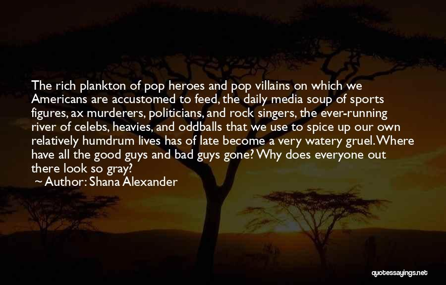 Best Celebs Quotes By Shana Alexander