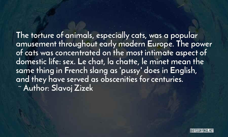 Best Chat Up Quotes By Slavoj Zizek
