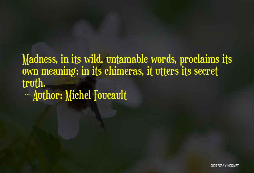 Best Chimera Quotes By Michel Foucault