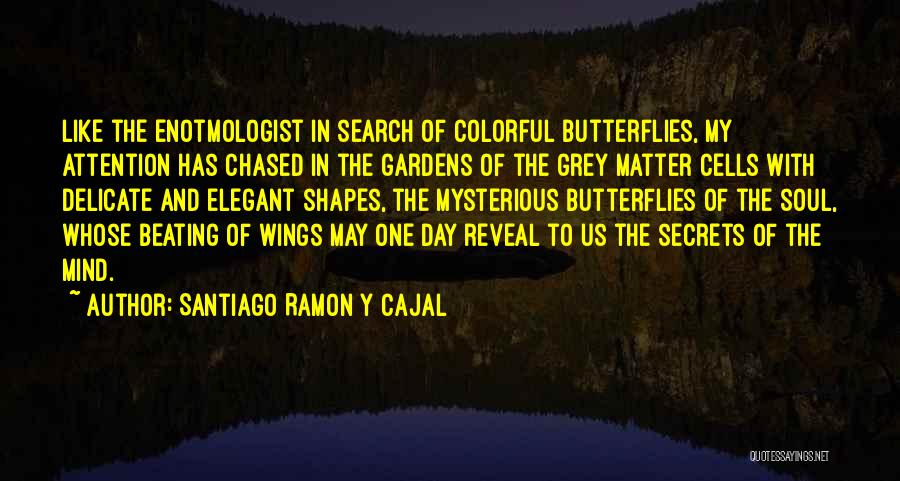 Best Colorful Quotes By Santiago Ramon Y Cajal