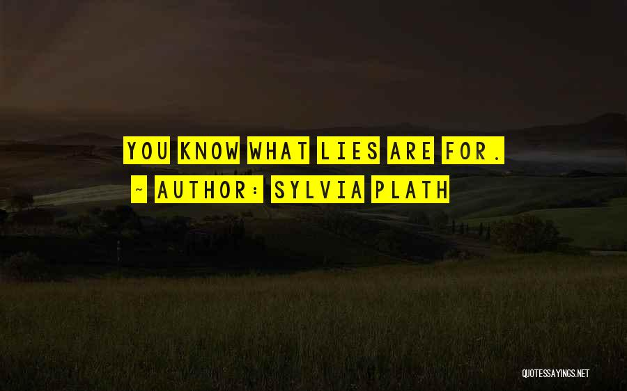 Best Deceit Quotes By Sylvia Plath