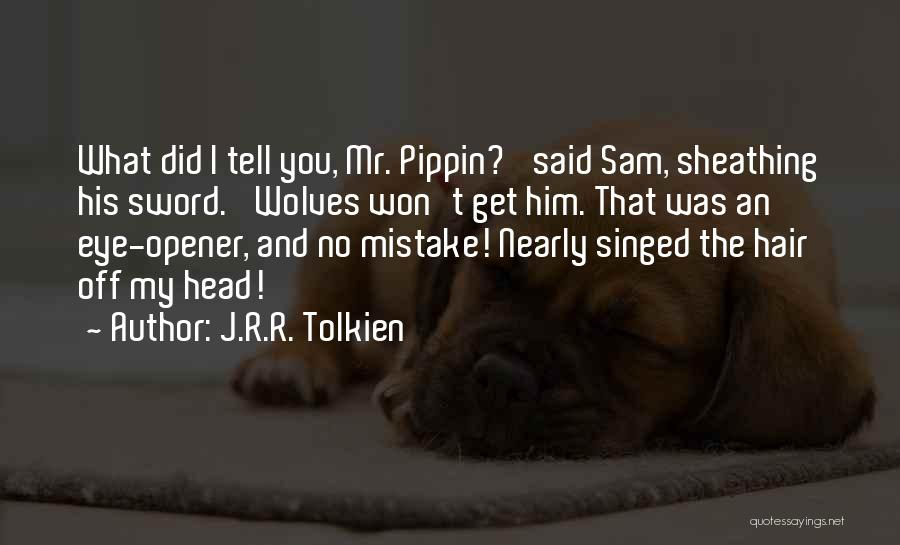 Best Eye Opener Quotes By J.R.R. Tolkien