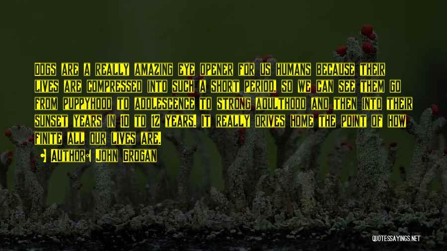 Best Eye Opener Quotes By John Grogan
