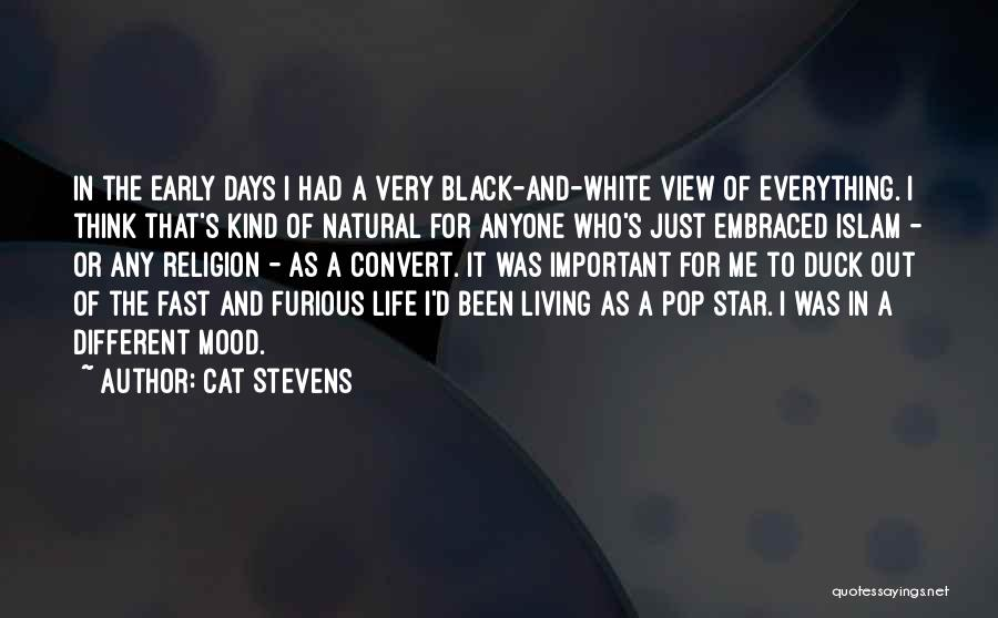 Best Fast And Furious 1 Quotes By Cat Stevens