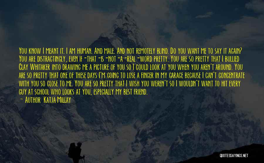 Best Friend Male Quotes By Katja Millay