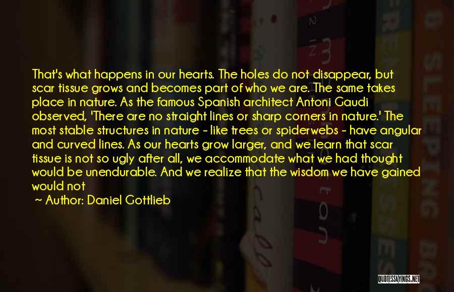 Best Gaudi Quotes By Daniel Gottlieb