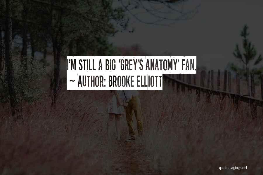 Best Grey's Anatomy Quotes By Brooke Elliott