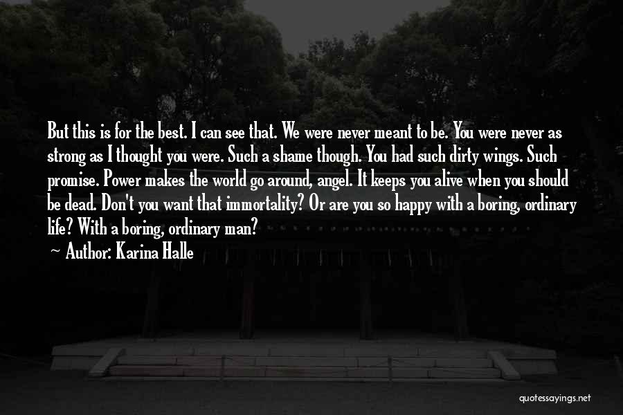 Best Happy Life Quotes By Karina Halle