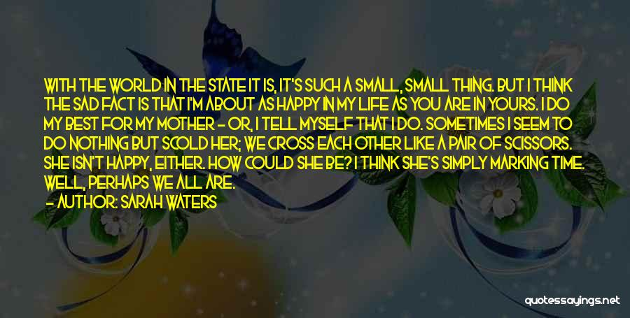 Best Happy Life Quotes By Sarah Waters