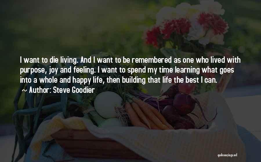 Best Happy Life Quotes By Steve Goodier
