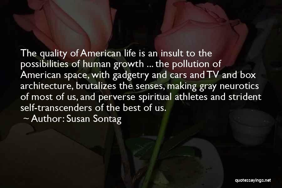 Best Insult Quotes By Susan Sontag