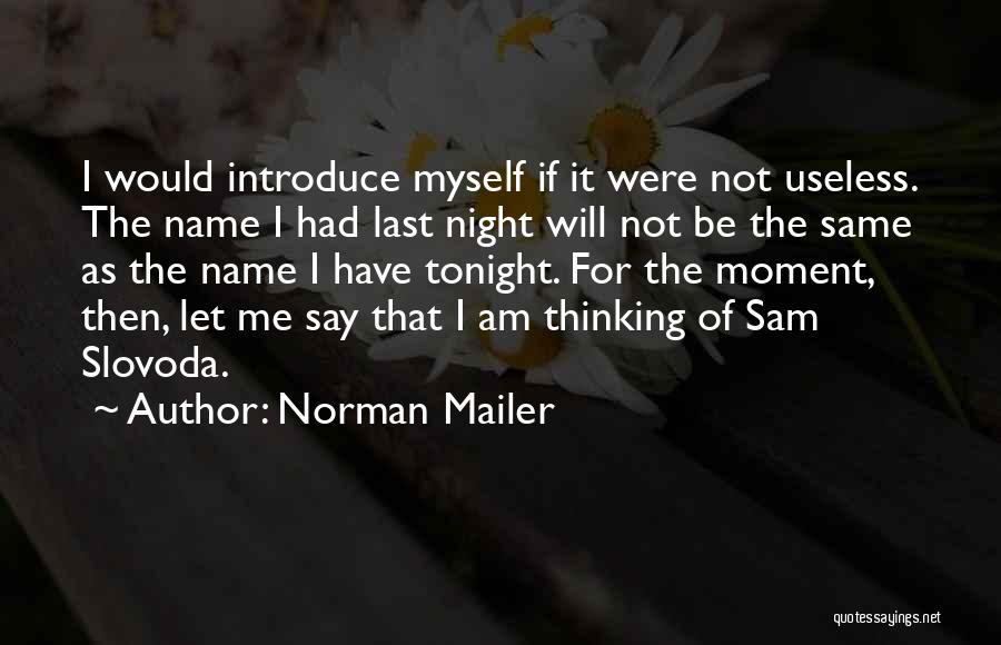 Best Introduce Quotes By Norman Mailer