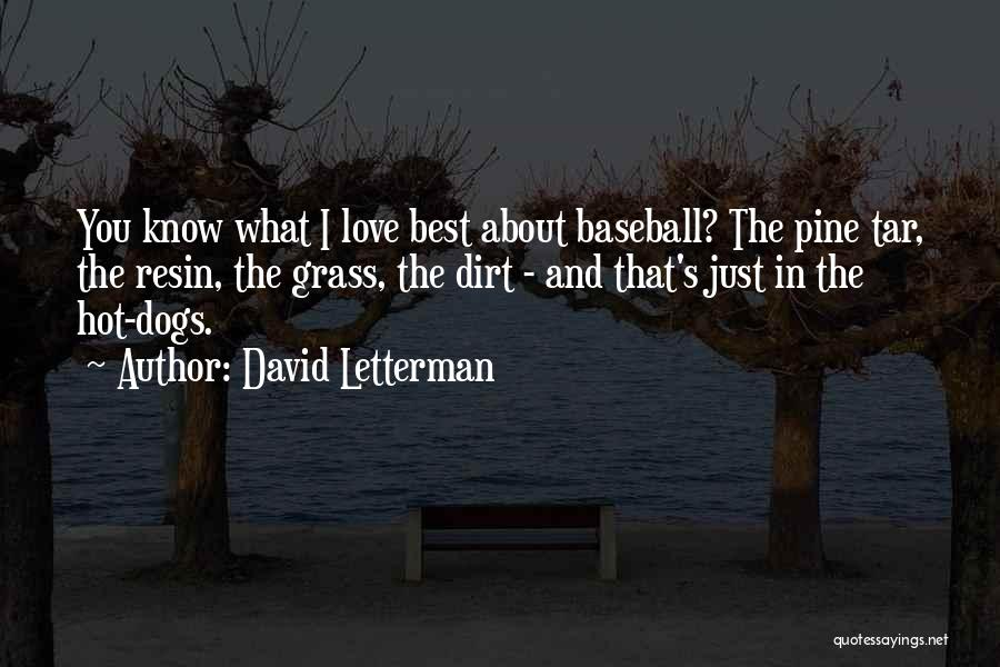 Best Letterman Quotes By David Letterman