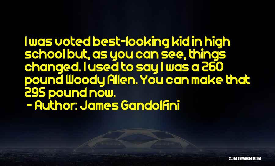 Best Looking Quotes By James Gandolfini