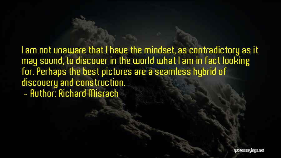 Best Looking Quotes By Richard Misrach