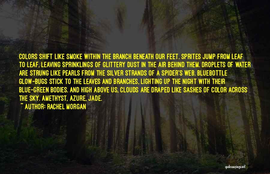 Best Night Shift Quotes By Rachel Morgan