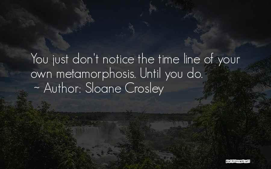 Best One Line Life Quotes By Sloane Crosley