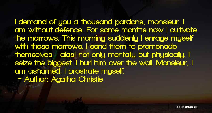Best Promenade Quotes By Agatha Christie