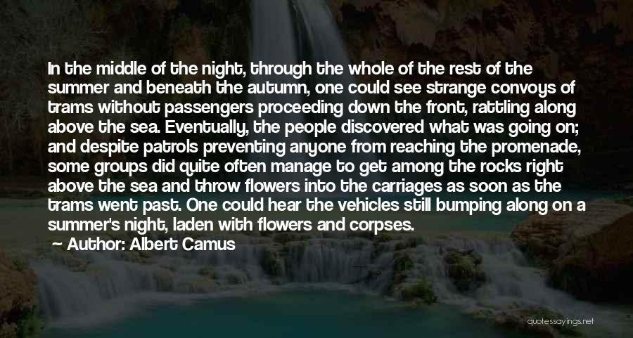 Best Promenade Quotes By Albert Camus