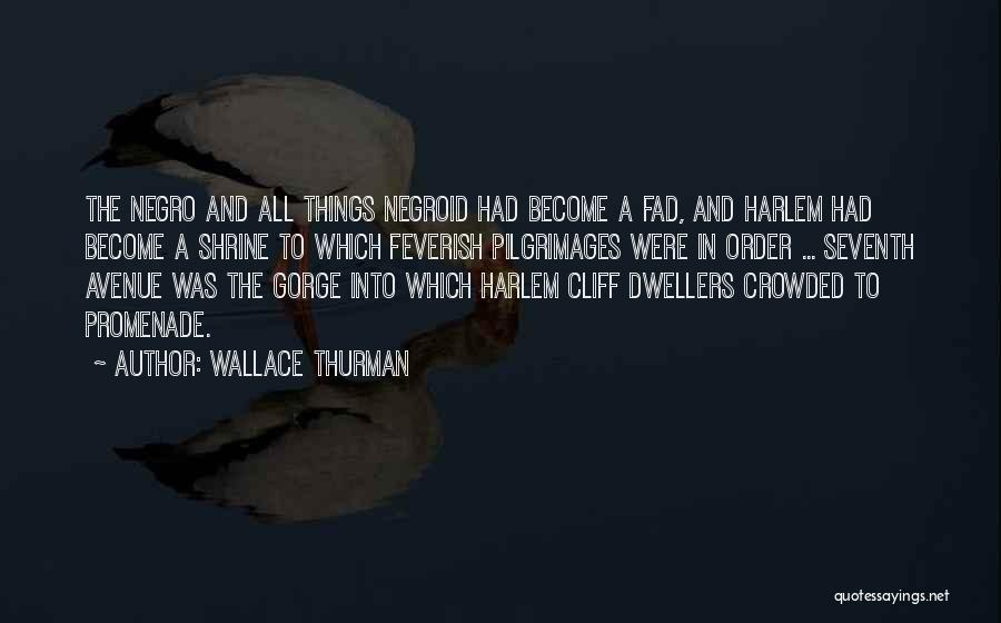 Best Promenade Quotes By Wallace Thurman