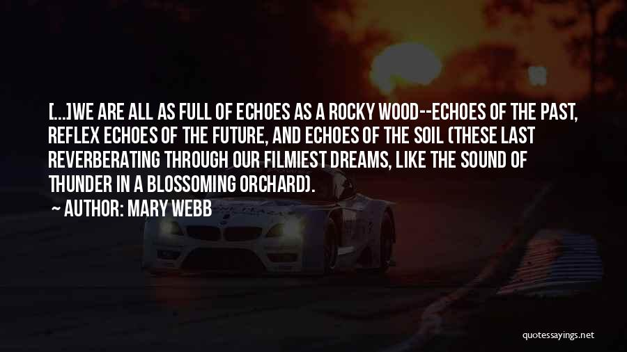 Best Rocky Inspirational Quotes By Mary Webb