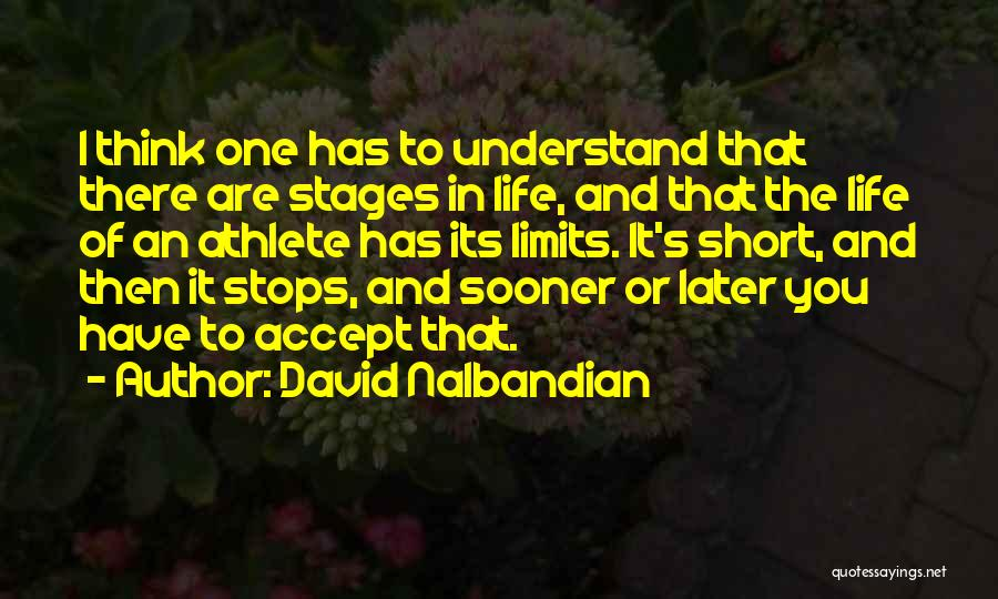 Best Short Athlete Quotes By David Nalbandian
