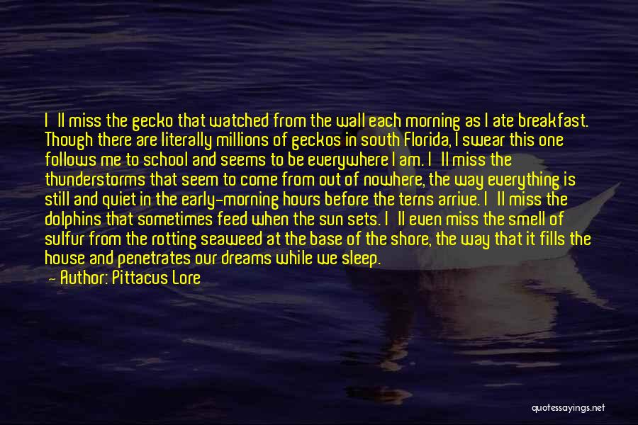 Best South Of Nowhere Quotes By Pittacus Lore