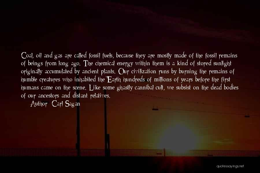 Best Sunlight Quotes By Carl Sagan